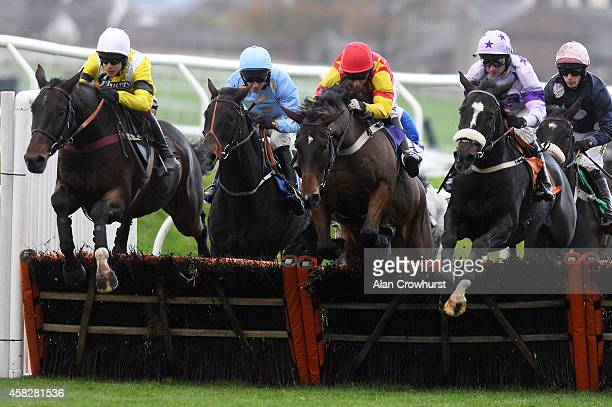 Brian Harding riding One For Harry on their way to winning The Geoffrey McLean Handicap Hurdle Race at Carlisle racecourse on November 02 2014 in...