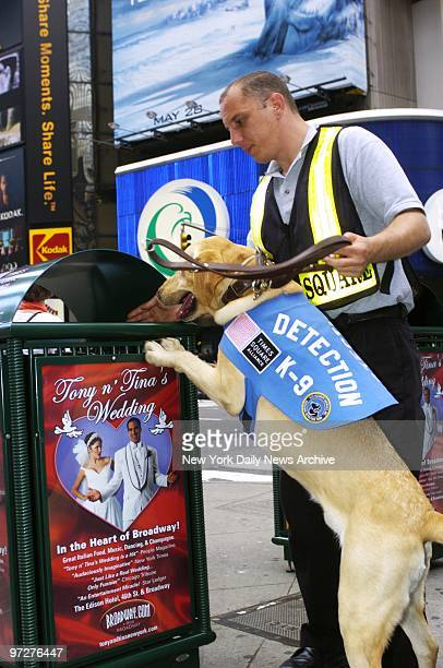 Brian Hayen works with Judge as the bombsniffing dog checks a refuse bin in Times Square The Times Square Alliance contracted a security service to...