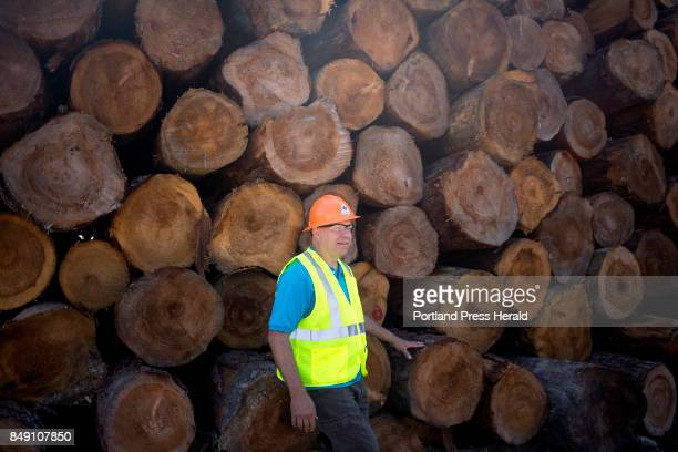 Brian Souers the president of Treeline Inc poses for a portrait in the woodyard The company which is family run was one of the companies that...