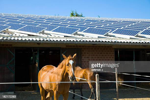A brick horse stable with a solar paneled roof