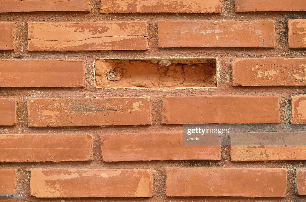 brick wall : Stock Photo