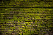 an old brick wall covered with a moss