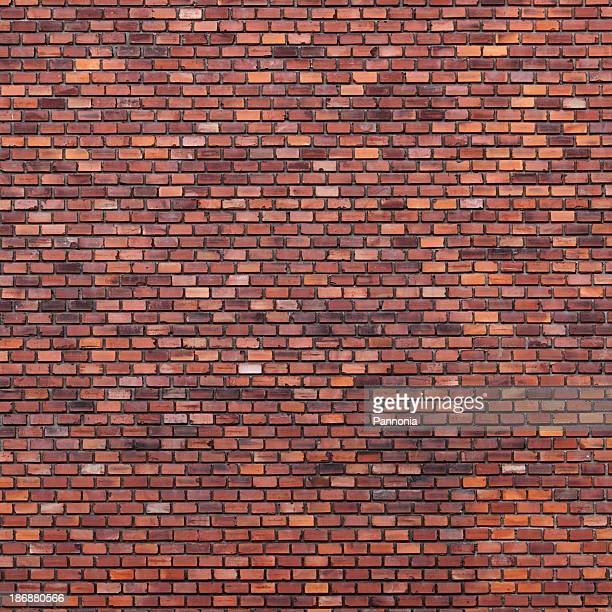Brick wall with various shades of brown