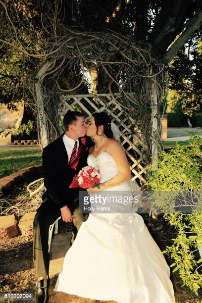 Bride and groom sitting on bench together under tree, kissing