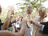 'Bride and groom toasting with guests, smiling'