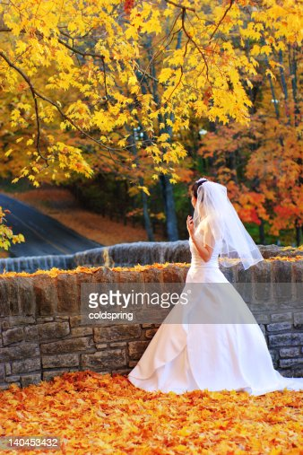 bride in the fall : Stock Photo