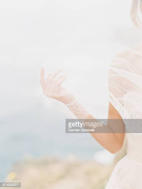 Bride's Hand Through Veil