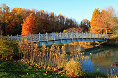 Bridge and Autumn Trees