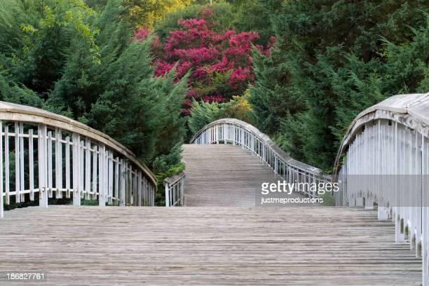 Puente en Pullen Park