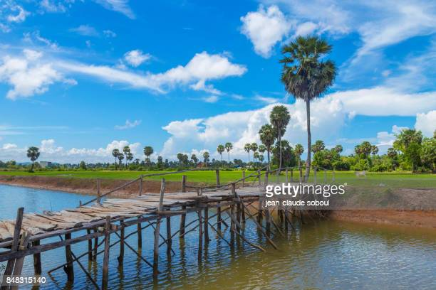 bridge crossing a canal overlooking the rice fields, in Kampot district (cambodia)