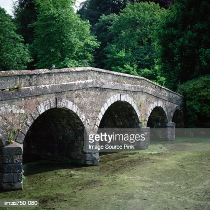 Bridge near trees : Stock Photo