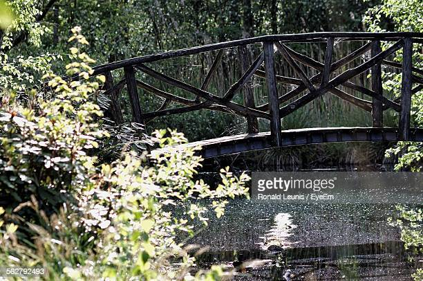 Bridge Over River In Garden
