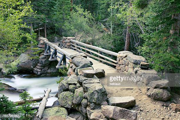 Bridge over river in Rocky Mountains