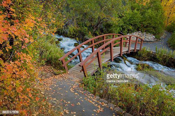 Bridge over stream in Wasatch Cache National Forest, Utah, USA
