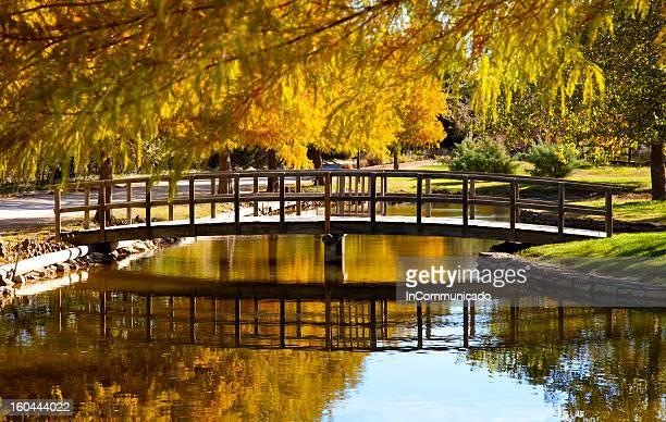 Pont reflet dans Creek