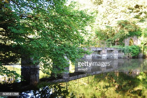 Bridge Reflection : Bildbanksbilder