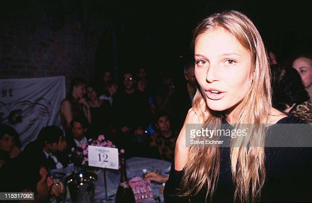 Bridget Hall during Bridget Hall at Tunnel 1995 at Tunnel in New York City New York United States