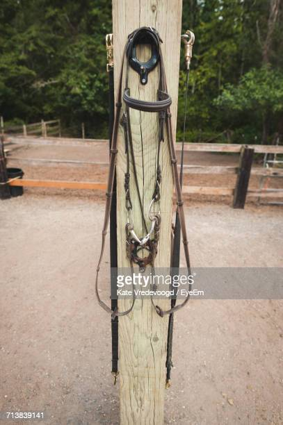 Bridle Hanging On Wooden Pole At Pen