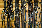 Bridles and Bits