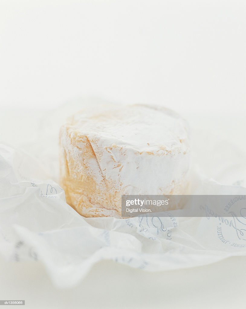 Brie in Packaging : Stock Photo