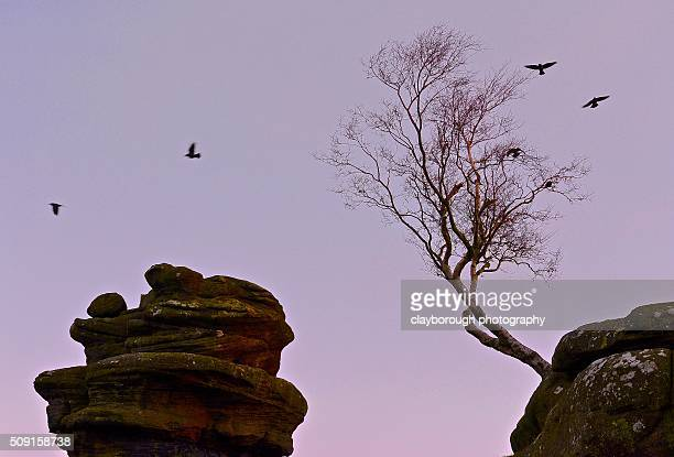 Brigham Rocks at Dawn