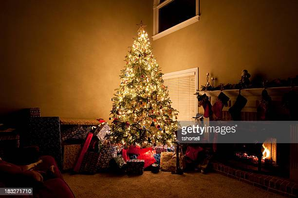 Brighly Lit Christmas Tree with Presents