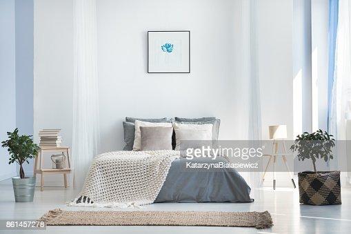 Bright bedroom interior with plants : Stock Photo