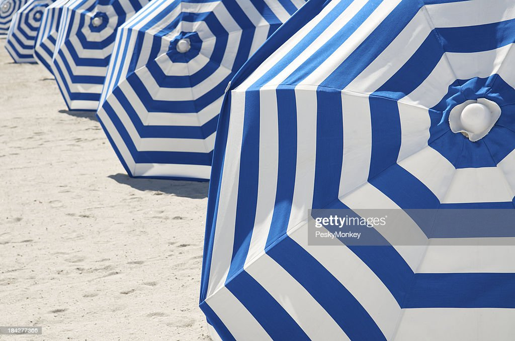 Bright Blue and White Striped Beach Umbrellas in a Row