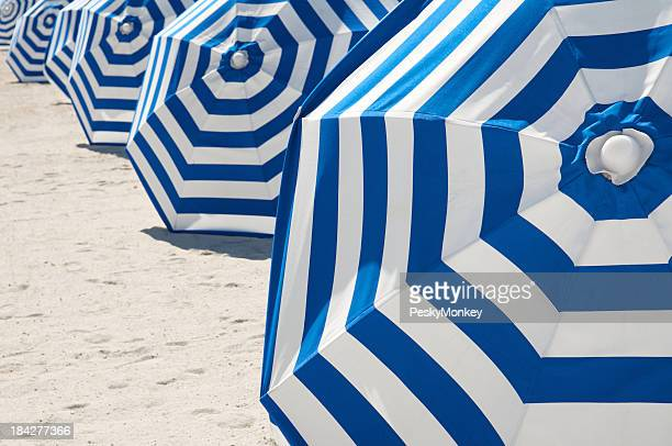 Bright Blue and White Striped Beach Umbrellas in a Row