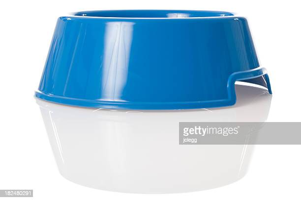 Bright blue dog bowl with reflection