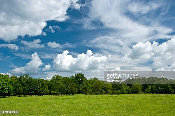 Bright country sky in spring