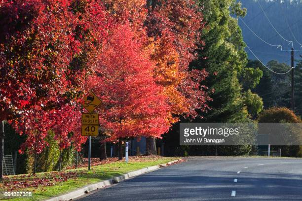 Bright , in Autumn, Victoria, Australia