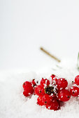 Bright red berries covered in fluffy white snow
