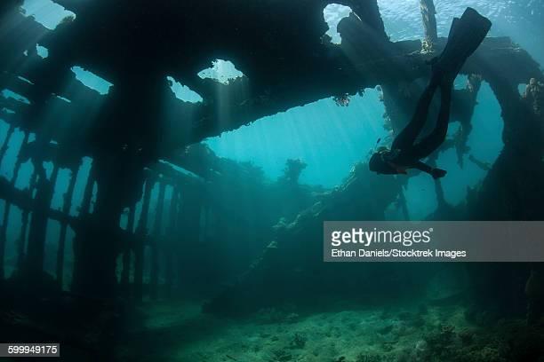 Bright sunlight pierces a shallow World War II shipwreck.