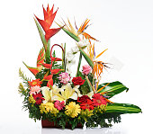 Bright tropical flower bouquet isolated on white background