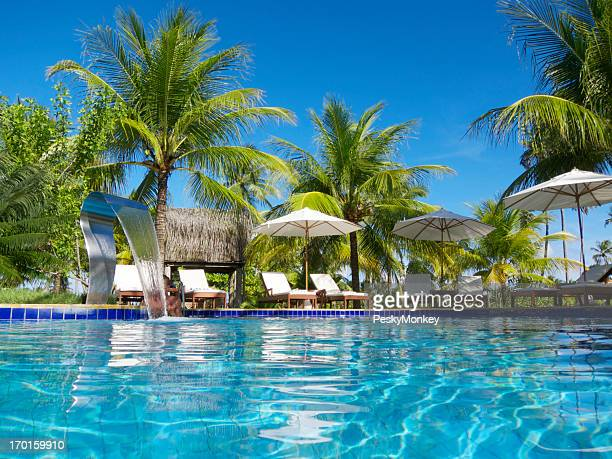 Bright Tropical Swimming Pool with Palm Trees Patio