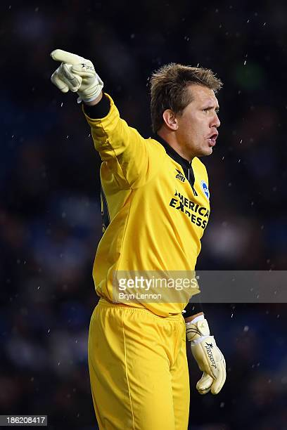 Brighton and Hove Albion goalkeeper Tomasz Kuszczak instructs his team during the Sky Bet Championship match between Brighton Hove Albion and Watford...