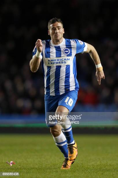 Brighton and Hove Albion's Tomer Hemed