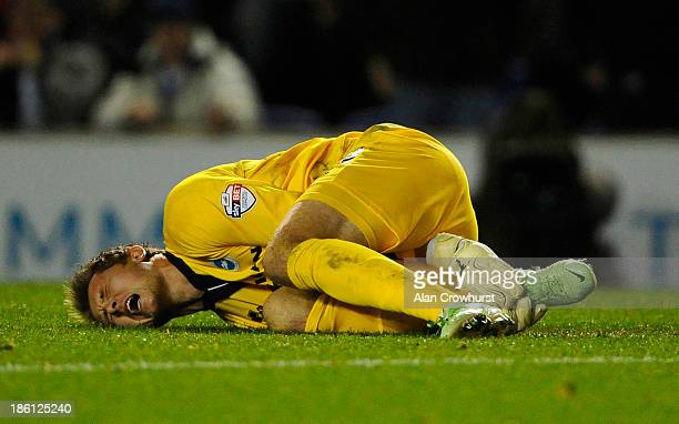 Brighton goalkeeper Tomasz Kuszczak lies on the ground after a tackle during the Sky Bet Championship match between Brighton Hove Albion and Watford...