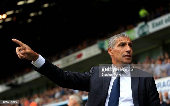Brighton Manager Chris Hughton gestures as he looks on during the Sky Bet Championship match between Ipswich Town and Brighton and Hove Albion at...