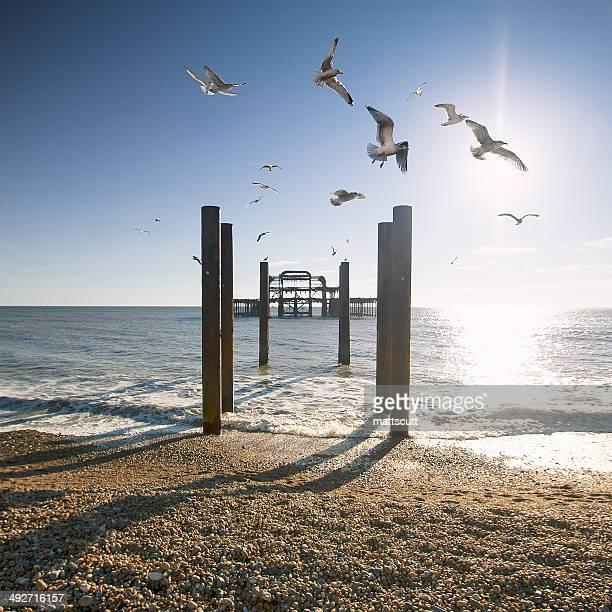 United Kingdom, Brighton West Pier