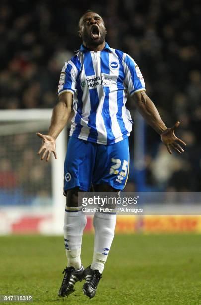 Brighton's Kazenga Lua Lua celebrates scoring his sides equalizer during the npower Football League Championship match at the AMEX Stadium