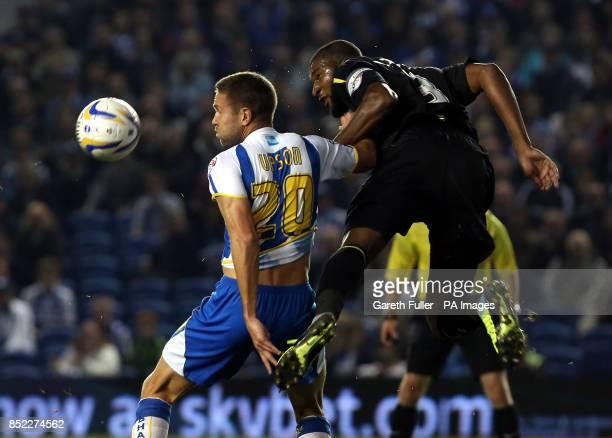 Brighton's Matthew Upson is challenged by Sheffield Wednesday's Reda Johnson during the Sky Bet Championship match at the Amex Stadium Brighton