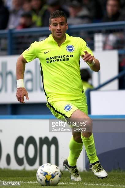 Brighton's Tomer Hemed