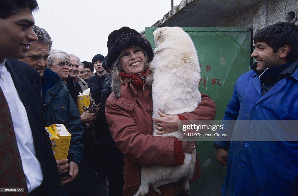 Brigitte Bardot In Romania. Au nom de sa fondation, Brigitte BARDOT s'est rendue à Bucarest pour plaider la cause des animaux. Une foule de curieux a suivi Brigitte, coiffée d'une toque en fausse fourrure, au refuge de la Basa, la fourrière municipale de Bucarest. Dans ses bras, le berger blanc qu'elle ramène à la Madrague.. Février 1998.