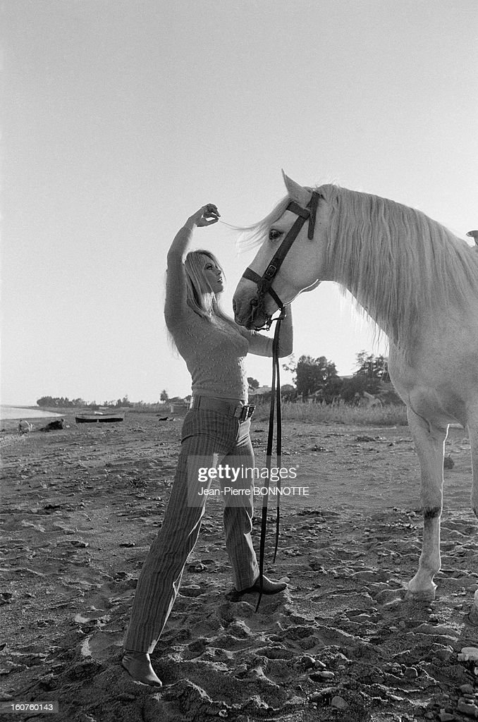 <a gi-track='captionPersonalityLinkClicked' href=/galleries/search?phrase=Brigitte+Bardot&family=editorial&specificpeople=202903 ng-click='$event.stopPropagation()'>Brigitte Bardot</a> with a horse on the Beach on March 30, 1968 in Almeria, Spain.