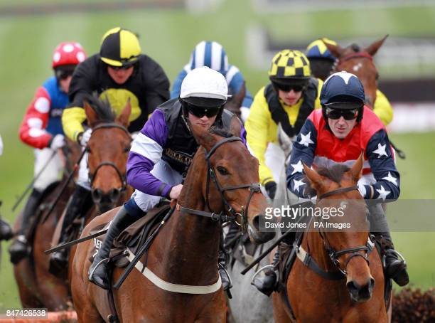Brindisi Breeze ridden by Campbell Gillies on their way to winning the Albert Bartlett Novices Hurdle during day four of the 2012 Cheltenham Fesitval...
