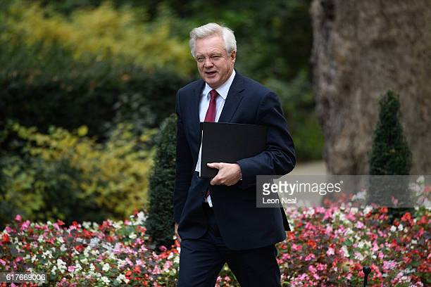 Britain's Brexit Secretary David Davis arrives ahead of a meeting between British Prime Minister Theresa May and the leaders of the three devolved...