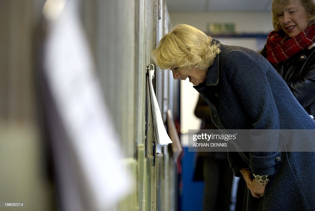 Britain's Camilla, Duchess of Cornwall, reacts as she looks into a dog kennel during a visit to the Battersea Dogs & Cats Home in London on December 12, 2012. Earlier in the year The Duchess rehomed Bluebell, a nine-week-old Jack Russell Terrier that was found astary in a London park. In August 2011, Her Royal Highness adopted Beth, a Jack Russell Terrier, from Battersea Dogs & Cats Home.