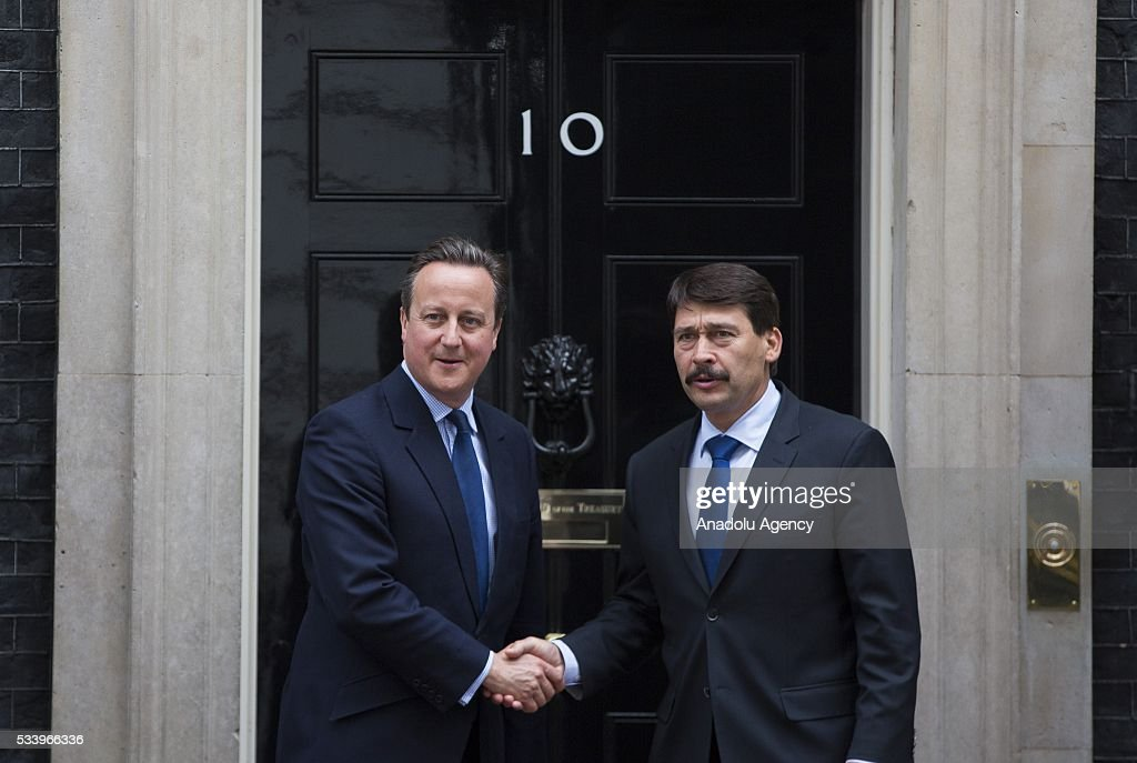 Britain's Prime Minister David Cameron (L) greets Hungary's President Janos Ader at Downing Street in London, Britain on May 24, 2016.
